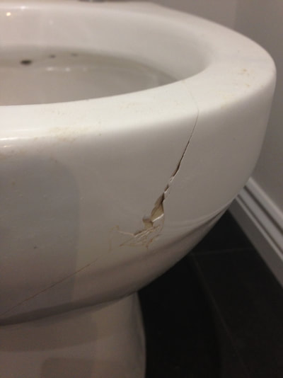 This photograph of a cracked toilet was taken in a new build house in Chester